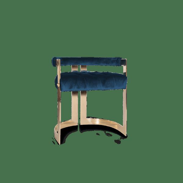 Winfrey Dining Chair by Ottiu